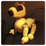 Claymation studio dog cam