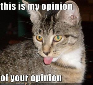 one cat's opinion on blog reviews