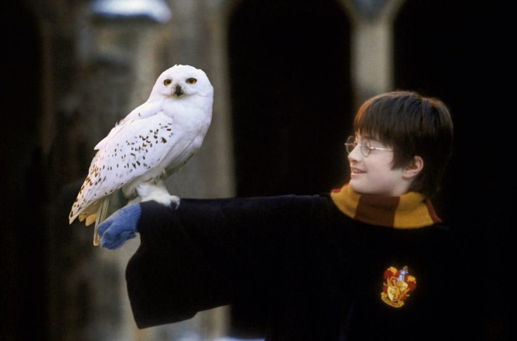 Harry Potter music concert